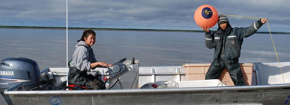 Drainage Fisheries Association